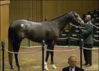 Half Ours, topped Monday session of Keeneland sale.
