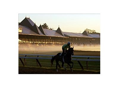 Unidentified horse and rider just after dawn on Travers Stakes Day at Saratoga.