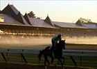 Saratoga Notebook: Classic Winners Missing, but Not Fans; Volponi Course Charted; Green Fee Out; No Marker for 'Dave