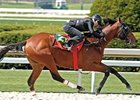Keeneland's two-year-old in training will be held April 6-7, 2009.