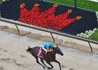 American Pharoah wins the 2015 Preakness