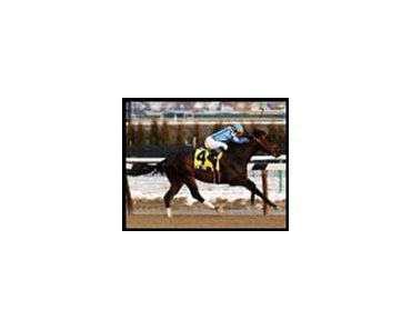 Spin Zone romps to victory in the Fred ``Cappy'' Capossela Stakes.
