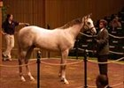Unbridled's Song colt is session three co-topper at $900,000.
