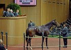 Samantha Nicole, a yearling full sister to 2010 Horse of the Year Rachel Alexandra sold for $700,000 Nov. 7 in Lexington.