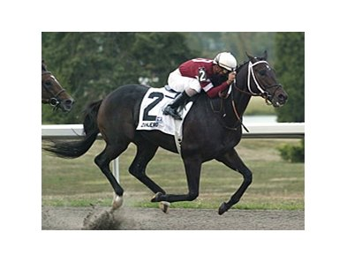 2008 Kentucky Cup Classic winner Zanjero has been retired.
