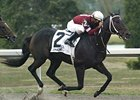 Zanjero won the 2008 Kentucky Cup Classic at Turfway Park's Fall meet.