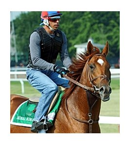 "Animal Kingdom at Belmont Park<br><a target=""blank"" href=""http://www.bloodhorse.com/horse-racing/photo-store?ref=http%3A%2F%2Fpictopia.com%2Fperl%2Fgal%3Fprovider_id%3D368%26ptp_photo_id%3D9558379%26ref%3Dstory"">Order This Photo</a>"