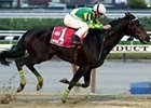 Moonlady, ridden by Chris DeCarlo, cruises to win the Long Island Handicap at Aqueduct Saturday.