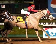 Diamond Stripes Earns Bling in Meadowlands Cup