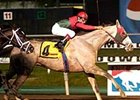 Favored Diamond Stripes pulls away in the Meadowlands Cup.