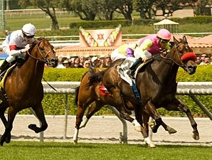 Compari Runs Streak to Six in Arcadia Victory