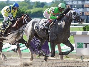 Dry Martini Rallies to Win Suburban Handicap