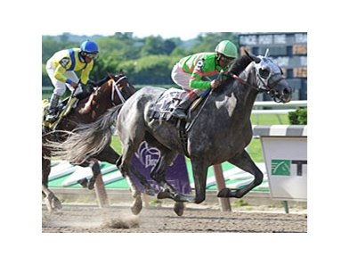 "Dry Martini finishes strong in the Suburban.<br><a target=""blank"" href=""http://www.bloodhorse.com/horse-racing/photo-store?ref=http%3A%2F%2Fpictopia.com%2Fperl%2Fgal%3Fprovider_id%3D368%26ptp_photo_id%3D8298603%26ref%3Dstory"">Order This Photo</a>"