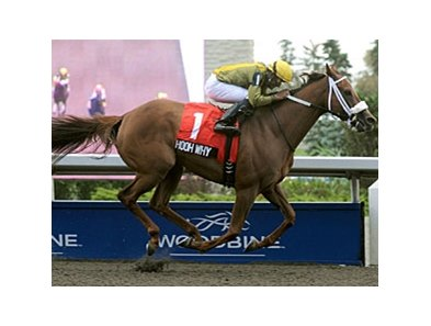 Hooh Why pulls away to take the Seaway Stakes at Woodbine.