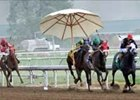 Horses maneuver out of the path of errant umbrella that blew across the track at Ellis Park.