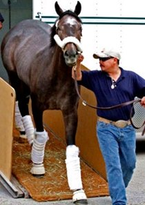 The Factor arrived at Churchill Downs on April 19.