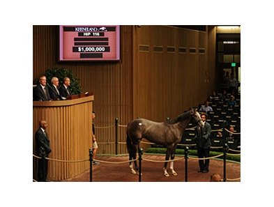 Hip 116 sold for $1 Million dollars during session 2 of the Keeneland September Sale.