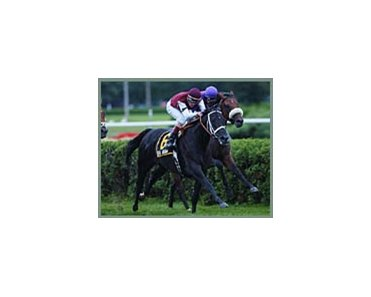 Ibn Al Haitham, kept turf record intact with Saranac victory.