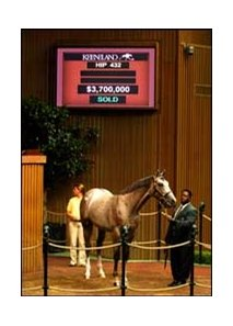 $3.7 Million colt, Unbridled's Song - Secret Status, by A. P. Indy.