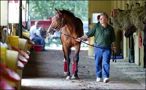 Aggressive Treatment Key to Afleet Alex's Recovery