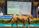 Sweet Idea sold for Aus$1,600,000 (US$1,240,117).