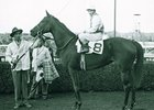 Flower Bowl won the Ladies Handicap in 1956.