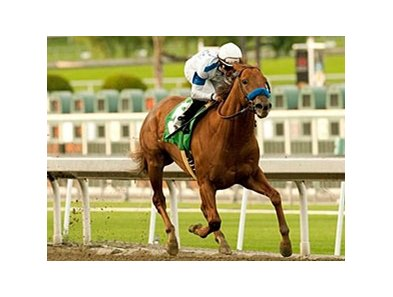"Sidney's Candy will start his 2011 campaign in the San Fernando.<br><a target=""blank"" href=""http://www.bloodhorse.com/horse-racing/photo-store?ref=http%3A%2F%2Fpictopia.com%2Fperl%2Fgal%3Fprovider_id%3D368%26ptp_photo_id%3D9346077%26ref%3Dstory"">Order This Photo</a>"