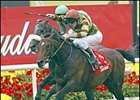 Alamshar, winning the Irish Derby.
