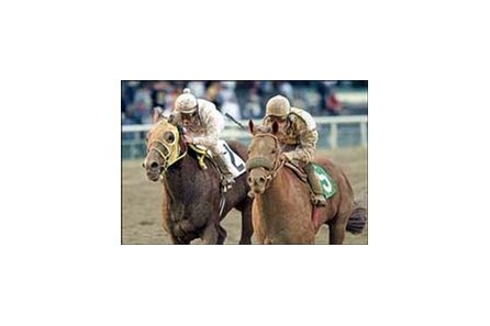 Trotamondo, right, outduels Bully Hayes to win the Native Diver Handicap, Saturday at Hollywood Park.