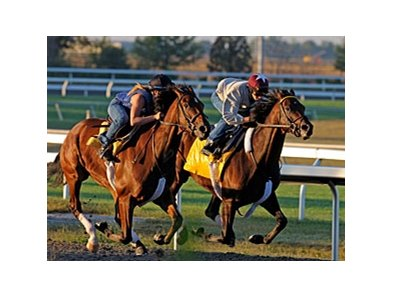 Blame (right) worked six furlongs over the Keeneland Polytrack on Sept. 12 in 1:11.80.