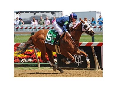 "Jennifer Rowland Small took Class Rules gate to wire to win the Lady Legends.<br><a target=""blank"" href=""http://photos.bloodhorse.com/TripleCrown/2012-Triple-Crown/Preakness-Scenes/23013270_2Shk7L#!i=1854212785&k=rZTDmhF"">Order This Photo</a>"