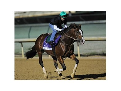Get Stormy jogging at Churchill Downs.