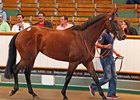 Business As Usual brought 460,000 guineas ($731,784 in U.S. funds) on the third day of the 2010 auction July 8 in England.