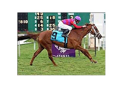 J'ray scored an easy win in the Feb. 24 Bayou Breeders' Cup Handicap (gr. IIIT) at Fair Grounds.