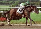 Among the 2003 victories by Horse of the Year Mineshaft was the Woodward.