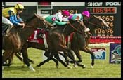 Arlington Park Race Report: One to Beat