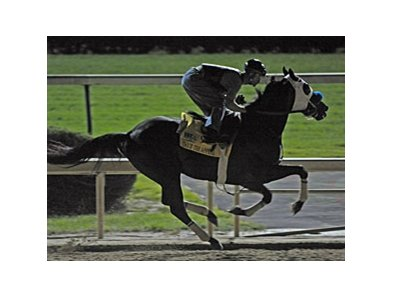 Twice the Appeal and Calvin Borel under the lights April 30 at Churchill Downs