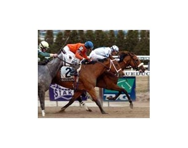 Smokey Glacken (right) captures the Distaff Breeders' Cup.