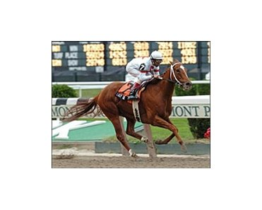 Lady Tak, ridden by jockey John R. Velazquez, captures the Gallant Bloom Stakes, Sunday at Belmont Park.