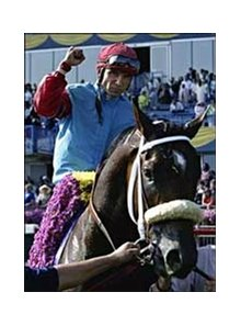 Wild Desert and jockey Pat Velenzuela following the Queen's Plate.
