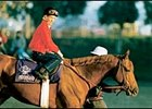 1986 Kentucky Derby winner Ferdinand, with Bill Shoemaker aboard.