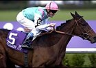 Banks Hill will seek to duplicate this victory in the 2001 Breeders' Cup Filly & Mare Turf.