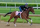 Puca works at Churchill Downs April 26.