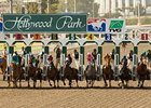 Hollywood Park Handle Declines Slightly