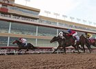 Remington Sets EHV-I Policy for Thoroughbreds
