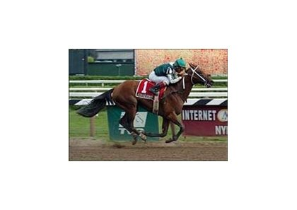 "Kodiak Kowboy lassos a Saratoga Special win.<br><a target=""blank"" href=""http://www.bloodhorse.com/horse-racing/photo-store?ref=http%3A%2F%2Fpictopia.com%2Fperl%2Fgal%3Fprovider_id%3D368%26ptp_photo_id%3D2029306%26ref%3Dstory"">Order This Photo</a>"