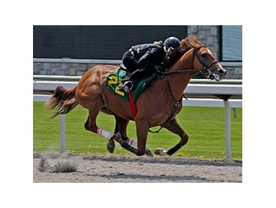 Vallenzeri (hip #22, A. P. Indy - Azeri) on track at Keeneland.