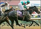 "Giacomo's last victory came in the 2005 Kentucky Derby. <a target=""blank"" href=""http://www.bloodhorse.com/horse-racing/photo-store?ref=http%3A%2F%2Fpictopia.com%2Fperl%2Fgal%3Fgallery_id%3D6305%26process%3Dgallery%26provider_id%3D368%26ptp_photo_id%3D441219%26sequencenum%3D%26page%3D"">Order This Photo</a>"