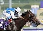 Halfbridled, winning the Breeders' Cup Juvenile Fillies.