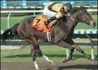 Hallowed Dreams, winning the 1999 Louisiana Champions Day Lassie Stakes.